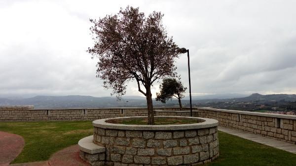 due alberi spogli in due cerchi di pietra, uno più in fondo, panorama di Bosa e colline da piazza in alto