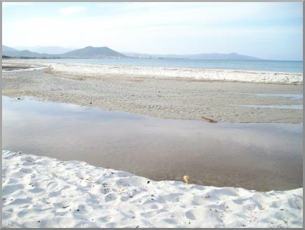 la Spiaggia lontana d'inverno e le pozze d'acqua presso la foce